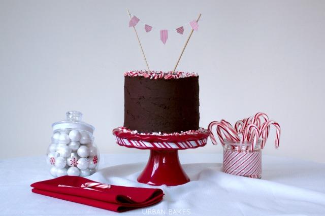 Peppermint Mocha Torte / Cake | URBAN BAKES